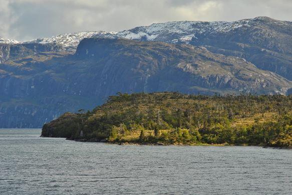 Flora y fauna del Parque Nacional Bernardo O'Higgins