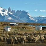 Las 6 maravillas del parque Nacional Torres del Paine