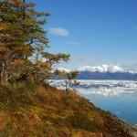 Parque Nacional Bernardo O´Higgins: el más extenso de Chile
