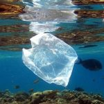 La lucha de Punta Arenas contra la contaminación plástica