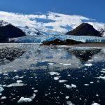 ¿Cuántos glaciares conforman los campos de hielo sur?
