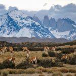 La espectacular geología de Torres del Paine