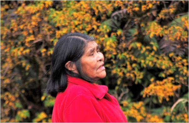 pueblo kaweskar, patagonia chilena